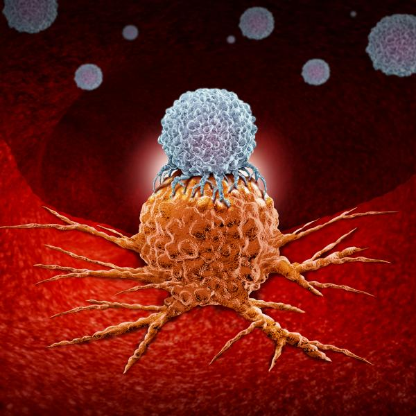 Inherited Cancers: Bridging the Gap between Cancer Risk Evaluation and Treatment